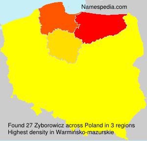 Zyborowicz