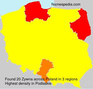 Zywna