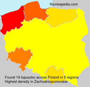 Surname lopuszko in Poland