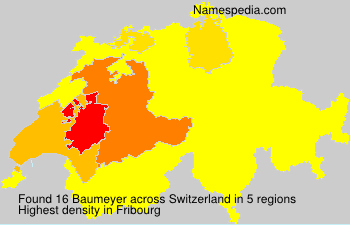 Surname Baumeyer in Switzerland