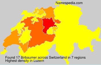 Birbaumer