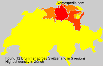 Brummer - Switzerland