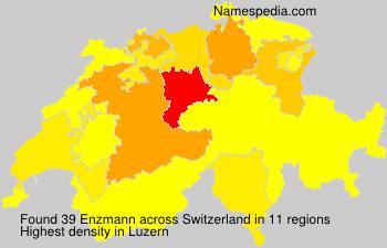 Enzmann