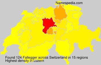 Fallegger