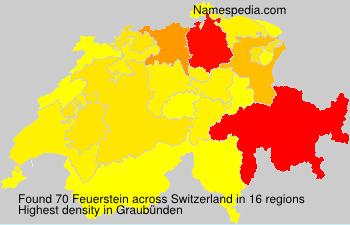 Familiennamen Feuerstein - Switzerland