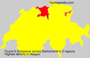 Grossauer