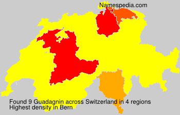 Familiennamen Guadagnin - Switzerland
