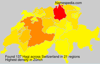 Surname Hagi in Switzerland