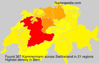 Kammermann