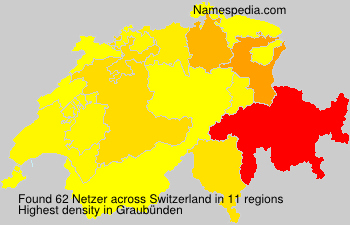 Surname Netzer in Switzerland