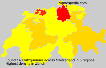 Surname Platzgummer in Switzerland