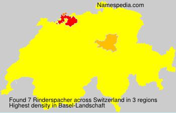 Rinderspacher