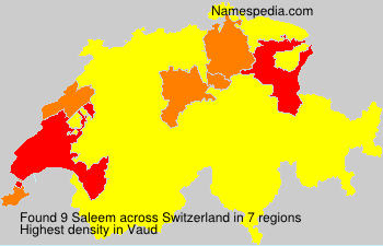 Surname Saleem in Switzerland