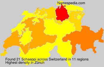 Surname Schaeppi in Switzerland