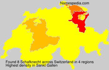 Schafknecht