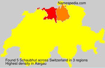 Surname Schaubhut in Switzerland