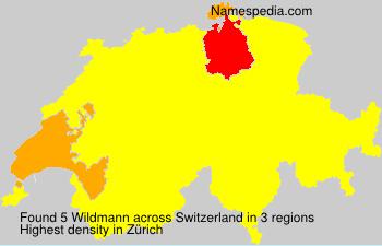 Surname Wildmann in Switzerland