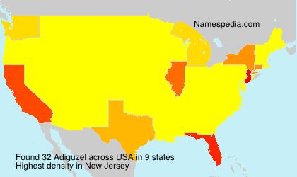 Surname Adiguzel in USA