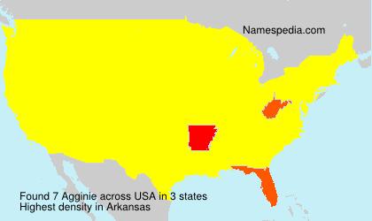 Surname Agginie in USA