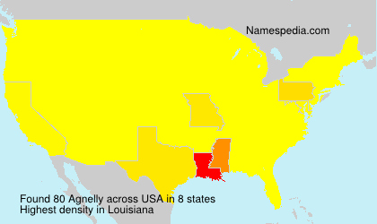 Surname Agnelly in USA
