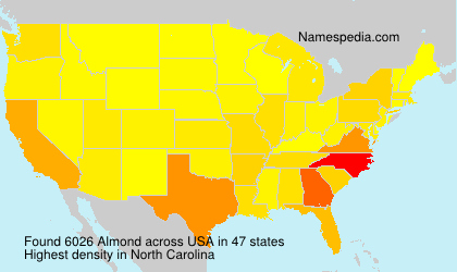 Surname Almond in USA