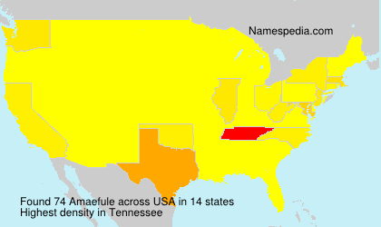 Surname Amaefule in USA