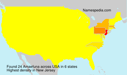 Surname Amaefuna in USA
