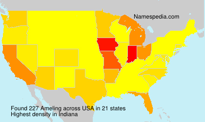 Surname Ameling in USA