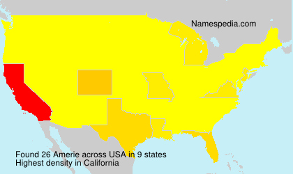 Surname Amerie in USA