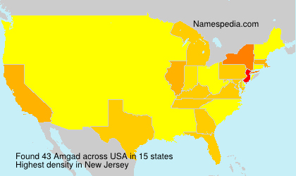 Surname Amgad in USA