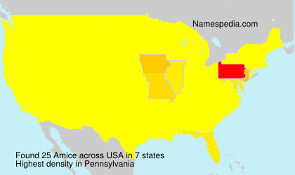 Surname Amice in USA