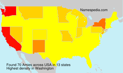 Surname Amies in USA