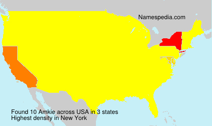 Surname Amkie in USA