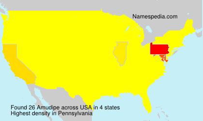 Amudipe - USA