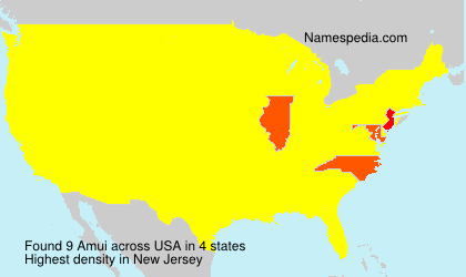 Surname Amui in USA