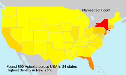 Surname Apicella in USA