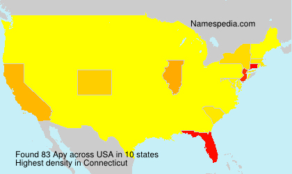 Surname Apy in USA
