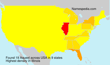 Surname Aqueel in USA