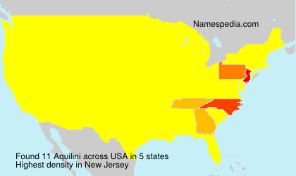 Surname Aquilini in USA