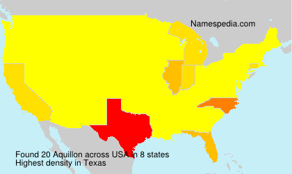 Surname Aquillon in USA
