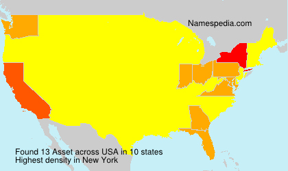 Surname Asset in USA