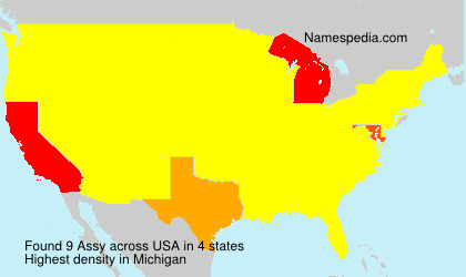 Surname Assy in USA
