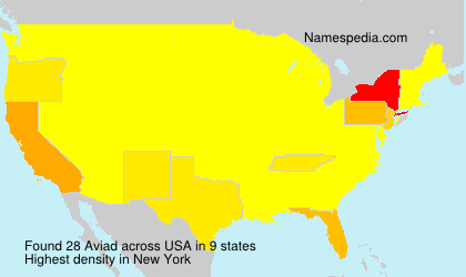 Surname Aviad in USA