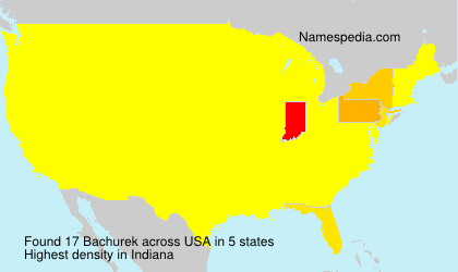 Surname Bachurek in USA