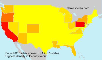 Surname Badzik in USA
