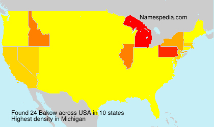 Surname Bakow in USA