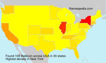 Surname Baldovin in USA