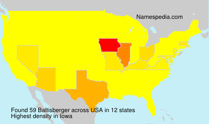 Surname Baltisberger in USA