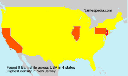 Surname Bamishile in USA
