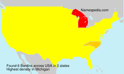Surname Bardins in USA